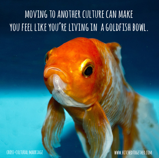 moving to another culture can make you feel like you're living in a goldfish bowl.